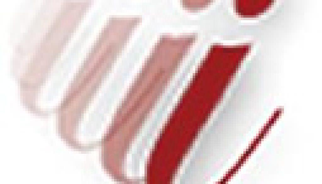 fastinfo logo