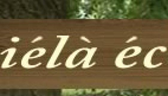 icielaeco-logo