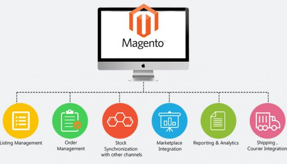 Site Blog 1_Magento_Ecommerce_Banner
